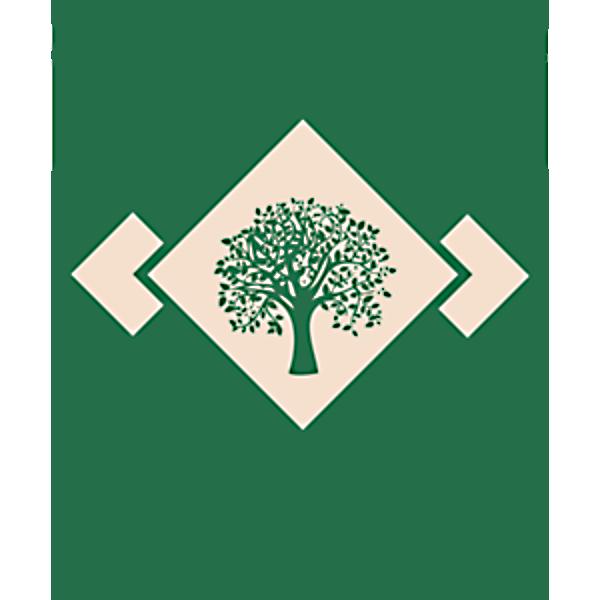 Бурятский фанерный завод «Ольхон», ООО